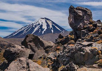 Der Vulkan Mount Doom in Neuseeland von Bep van Pelt- Verkuil