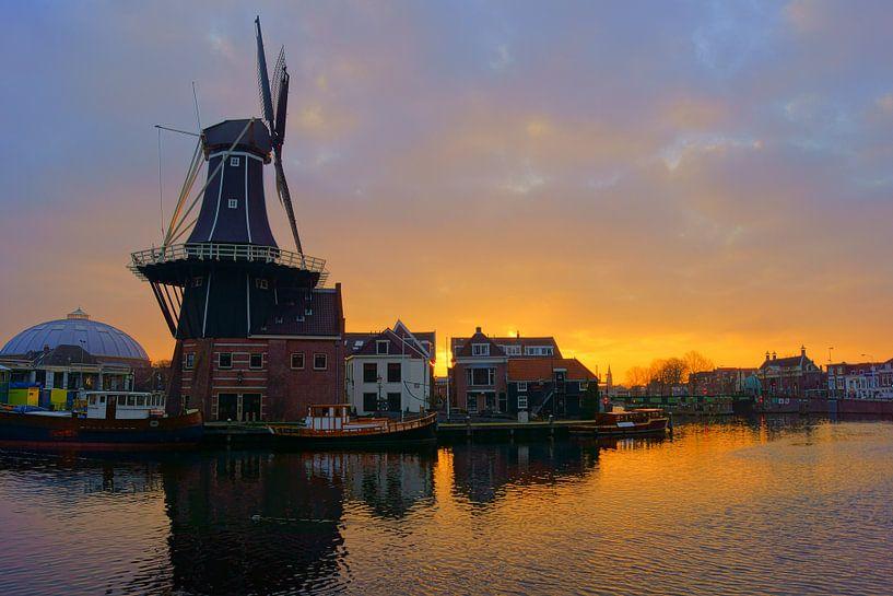 Het Spaarne, Haarlem van Michel van Kooten