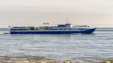 Ms. Noord Nederland en Friesland van