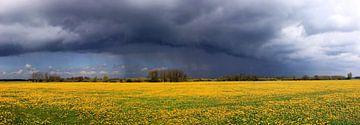 Voorjaar kleuren von Hielke Roelevink
