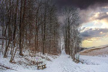 DE - Baden-Württemberg : Winterlandschap van Michael Nägele