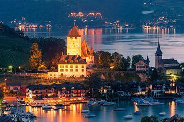 Château de Spiez, Suisse sur Henk Meijer Photography