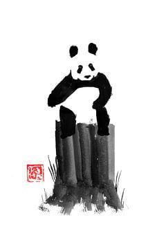 panda op zijn gezaagde boom van philippe imbert