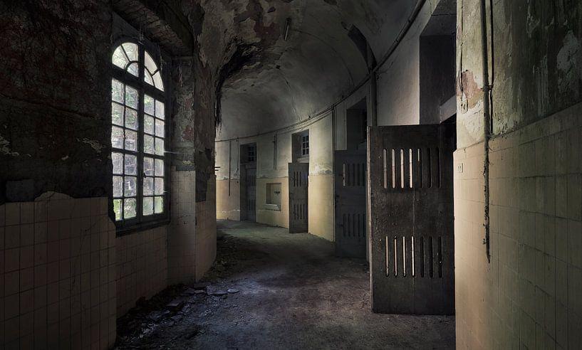 prison break  van Dieter Herreman