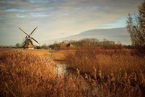 Windmill in Kardinge von Luis Fernando Valdés Villarreal Boullosa