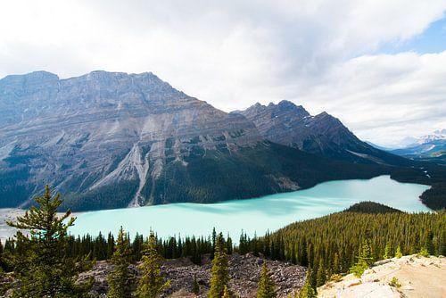 Peyto Lake, Banff National Park van