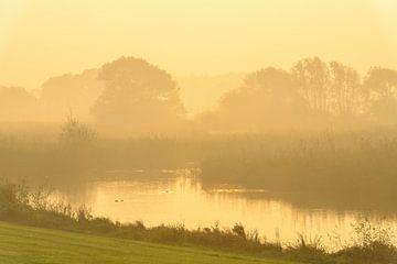 Zonsopgang over de IJssel tijdens een mooie herfstochtend van Sjoerd van der Wal