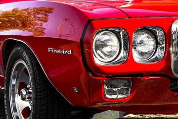 Pontiac Firebird van Rob Smit