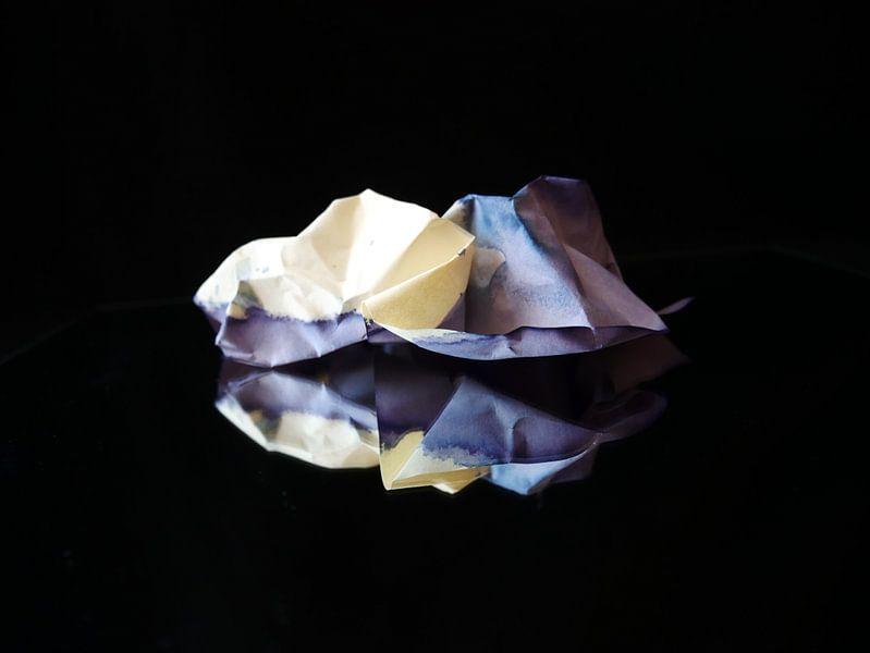 Gespiegelde paarse prop papier van Birdy May