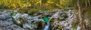 Rivierbedding in eenzaam bos van Denis Feiner