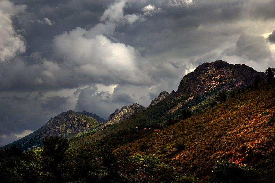 Sierra Guadaloupe van Harrie Muis