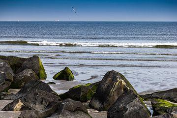 Strand met keien Hoek van Holland van Carin IJpelaar