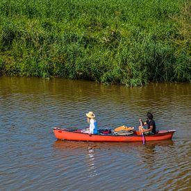 naviguer dans le Biesbosch sur Freddie de Roeck