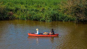 naviguer dans le Biesbosch
