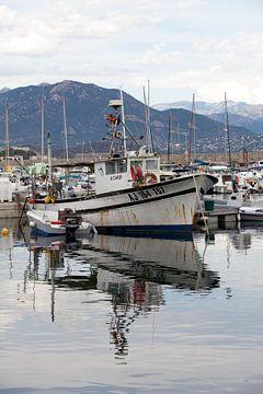 Boote im Hafen von Ajaccio, Korsika. von Kees van Dun