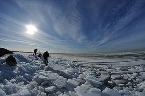 Arctisch Nederland