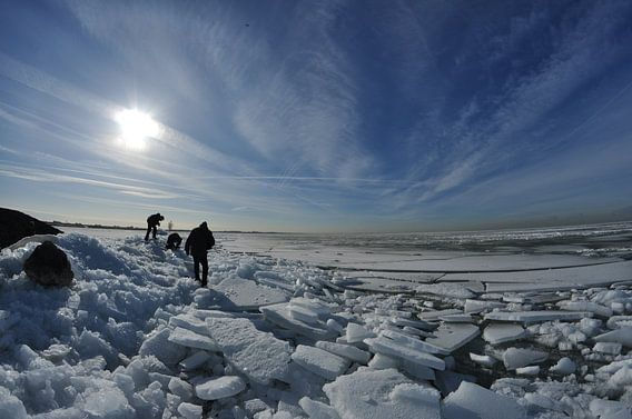 Arctisch Nederland van Lex Schulte