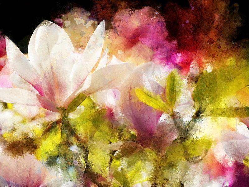 Magnolie von Andreas Wemmje