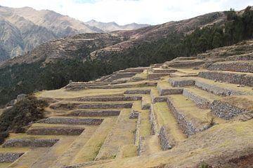 Peru, Inka, Terassen von Patsy Van den Broeck