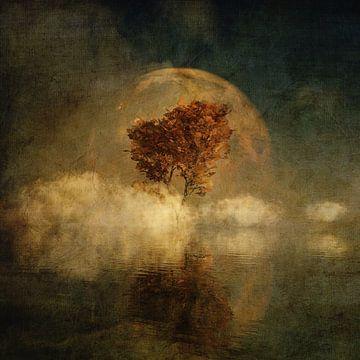 Volle maan boven water van Jan Keteleer