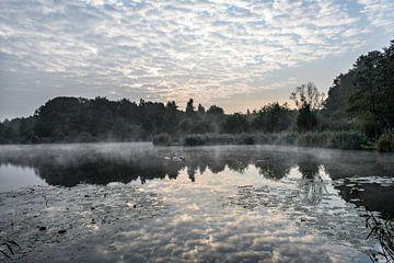 Ochtend aan een meer van Emil Cobussen