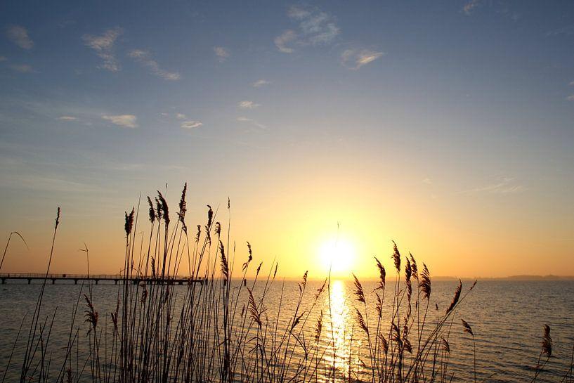 Morgenstimmung im Winter von Ostsee Bilder