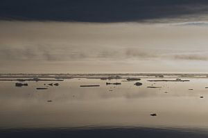 Tales of Arctic light