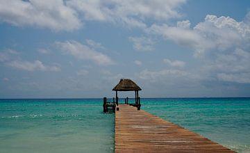 Caribbean dream van Marcel Schouten
