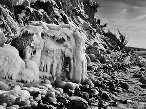 Eismammut – Steilküste Hohes Ufer, Ahrenshoop, Darß von
