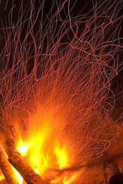 FIRE! sur Douwe Schut