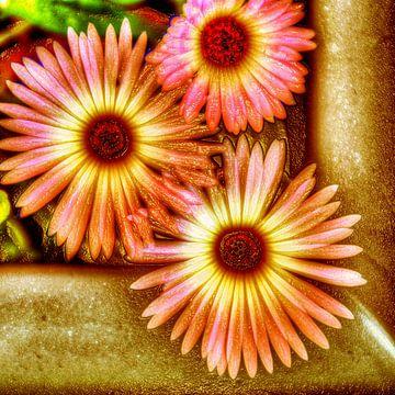 Digital Art Medium Blumen Warm von Hendrik-Jan Kornelis