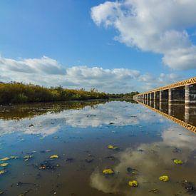 Eisenbahnbrücke mit Moerputten bei 's Hertogenbosch, Den Bosch von Patrick Verhoef