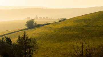 Mistige ochtend in Sauerland von Thomas Lang