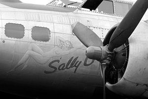 Sally-B 1945 van