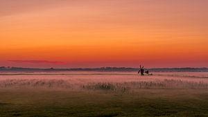 Texel zonsondergang De Staart