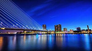 Skyline Rotterdam bluehour van