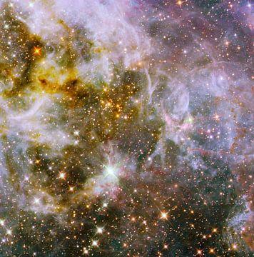Hubble telescoop foto,s van NASA van Brian Morgan