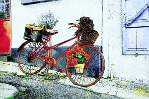 Fiets met bloemen in Saint-Valery-sur-Somme