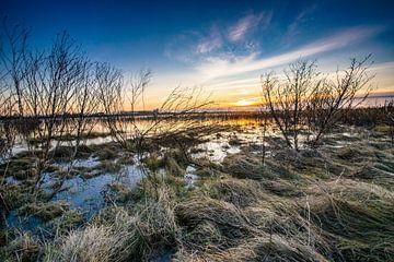 Der Fluss IJssel & Überschwemmungsgebiete von Fotografiecor .nl