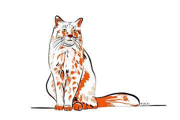 Rode kat lijnen van Teun Poppelaars