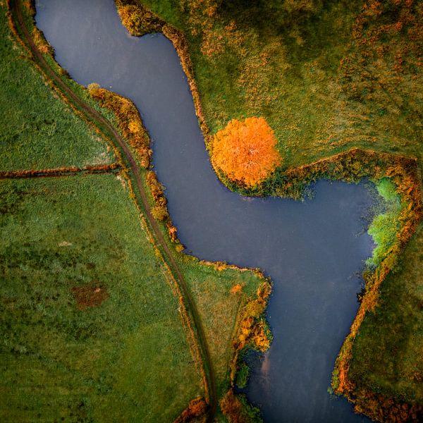 Oranje stip van Ruud Peters