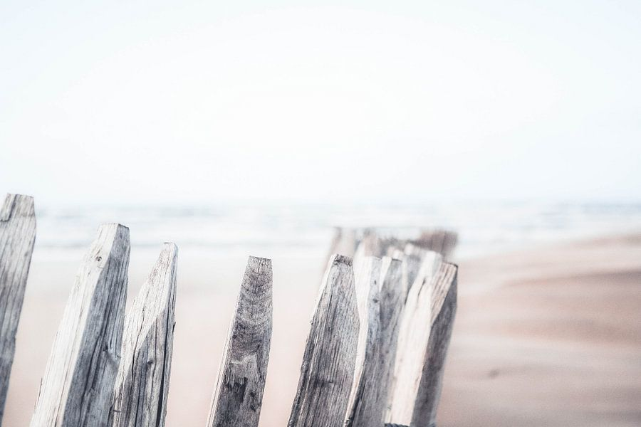 Nederlands strand
