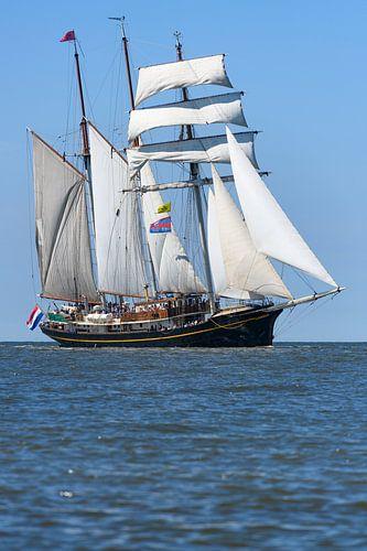 Driemaster schoener Gulden Leeuw zeilt op de Waddenzee