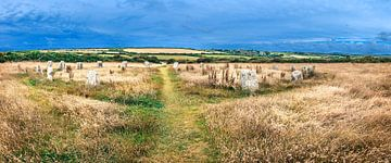 Cercle de pierres à Cornwall, sud de l'Angleterre sur Rietje Bulthuis