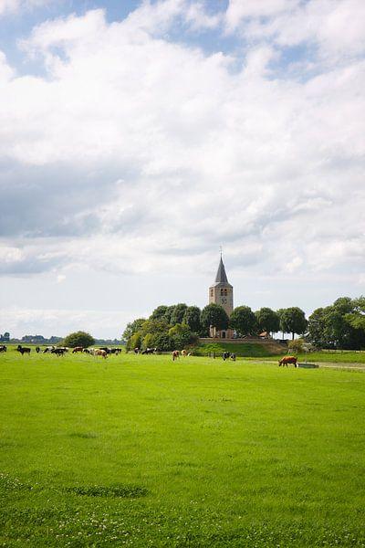 Friesland Wiesenrindkirche sur Jan Brons
