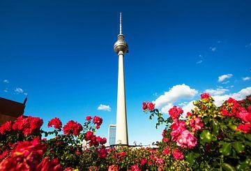 Tour de télévision de Berlin avec de nombreuses roses