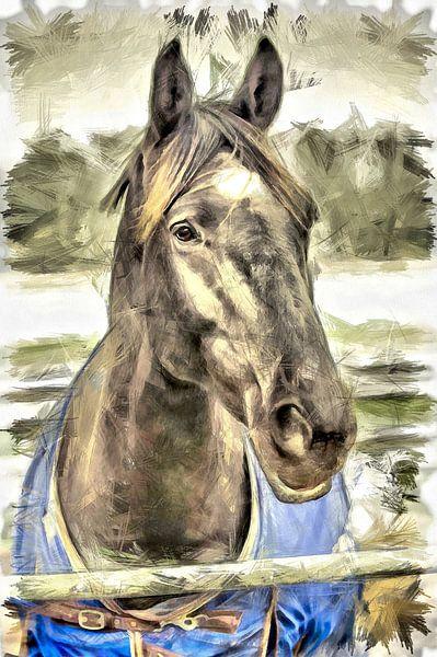 Het paard van Michel Derksen