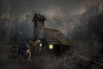 Huis van Anett Kazimierska