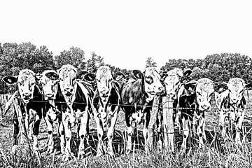 Kühe in schwarz-weiß von Ans Bastiaanssen
