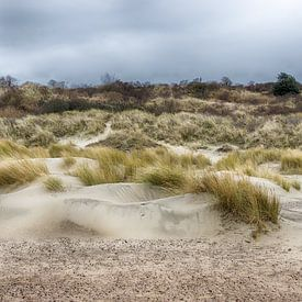 Zeeuwse duinen van Mark Bolijn
